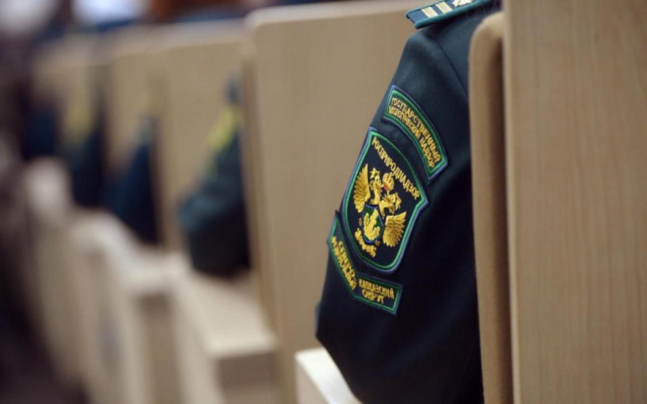 Лицензирование деятельности на обращение с отходами – «Нева Консалт»